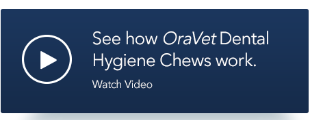 See how OraVet Dental Hygiene Chews work